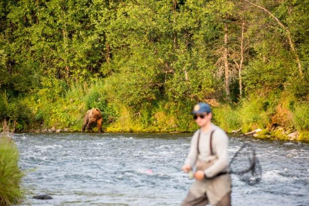 bears and fly fishing in Alaska