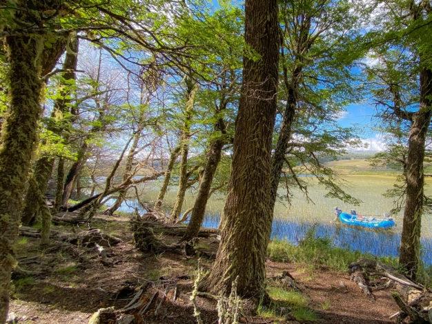 Lago Primitiva Rio Pico